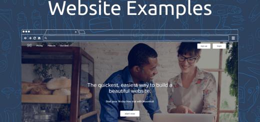 Moonfruit Website Examples