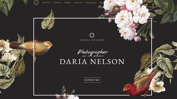 Nelson - Wix Photography Website